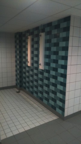 Feature Shower Wall Tiling to Showers